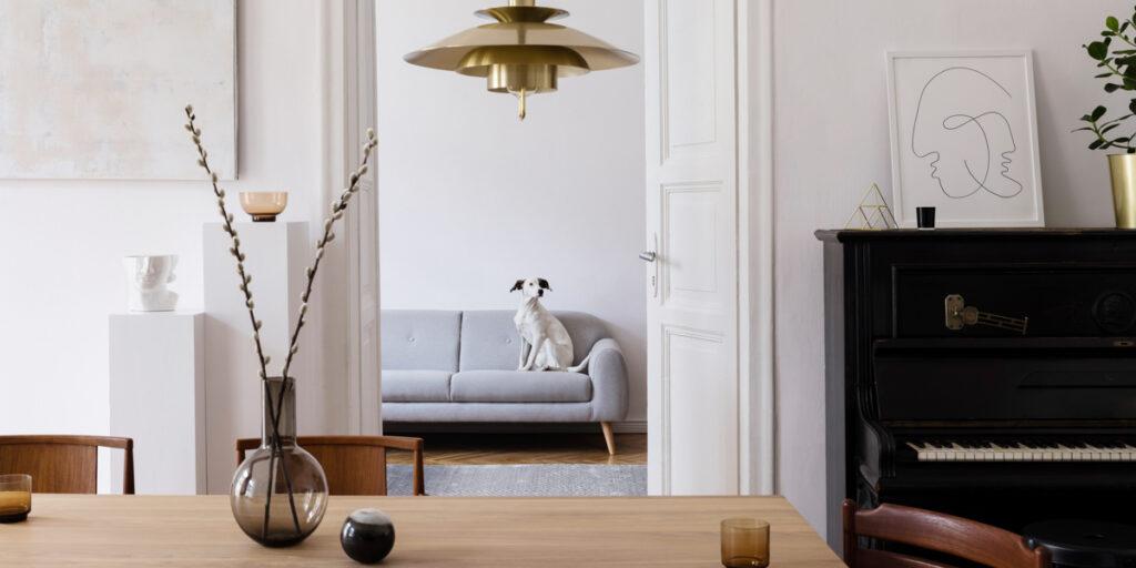 Basiseinheit Hund Wohnung Couch Training